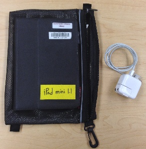 iPad Mini, iPad case, bag, USB sync cable, and USB power adapter